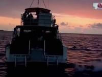 Aloha Hawai (Los Lugares más Cool del Planeta)