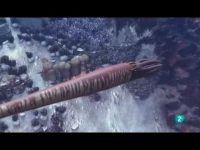 Armageddon Animal 1 - Rayos letales