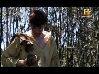 Canibalismo: Supervivencia extrema