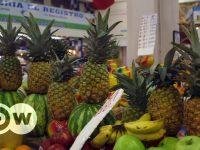 Costa Rica: El precio de la piña