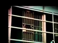 Crímenes Millonarios – Deseos ocultos