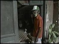Cuba 111, lo que no se ve de La Habana turística