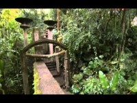 El Mundo en 80 Jardines 01 – México y Cuba