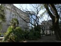 El Mundo en 80 Jardines 04 – Sudamérica