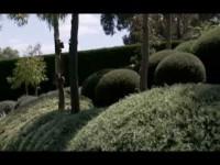 El Mundo en 80 Jardines – Australia y Nueva Zelanda
