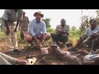 Gastronomía Insólita - Uganda