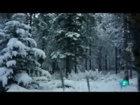 Invierno en Canadá (El Hombre y la Tierra)
