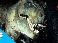 La verdadera extinción de los dinosaurios