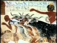 Las ciudades de los faraones (Secretos de la Arqueología)
