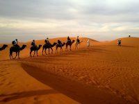 Un Mundo Aparte – Más allá de los desiertos
